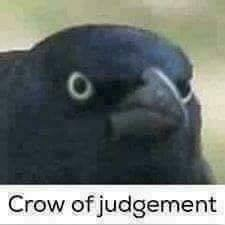 crow of judgement
