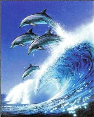 Dolphins jumping a wave