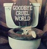 goodbye cruel world cat suicide