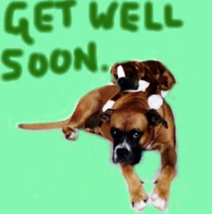 get well soon dogs