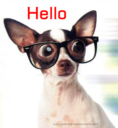 hello dog with glasses