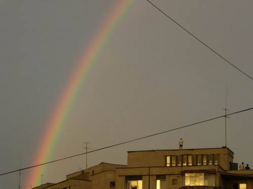 Rainbow over the city