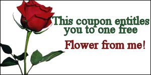 flower from me coupon