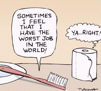 toilet paper disagrees with tooth brush