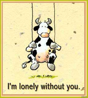 i'm lonely without you cow swinging