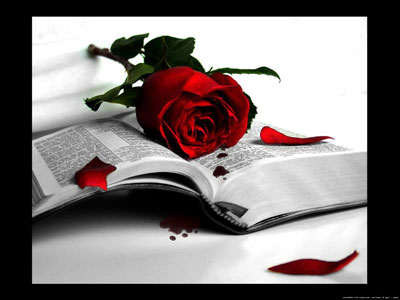 rose on book