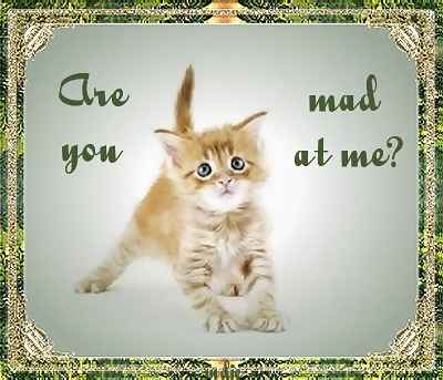 are you mad at me