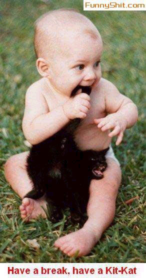 baby chews on kitten's tail