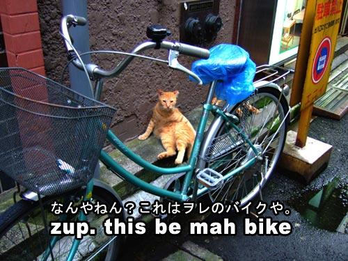 sup this is my bike