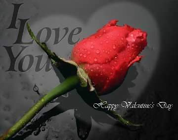 i love you happy valentines day