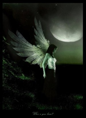 angel moonlight