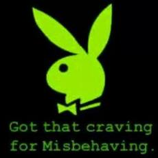 Got that craving for misbehaving