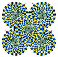 circles appear to be moving illusion
