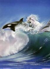 unicorn and dolphins
