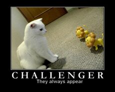 challenger they always appear