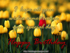 i hope all your wishes come true on your special day happy birthday