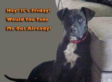 it's friday would you take me out already