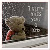 Search miss you
