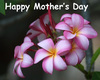 Category Mothers Day